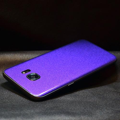 small-Chameleon%20phone.jpg