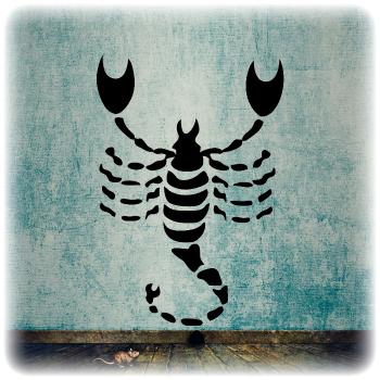 Многоразовый трафарет Скорпион