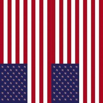 Наклейка на телефон Флаг США