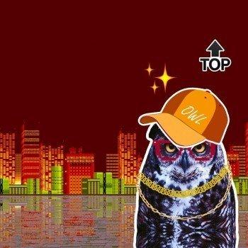 Наклейка на телефон OWL TOP [ RED SKY ]