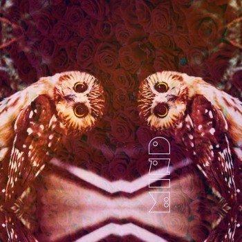 Наклейка на телефон Mind [owl, roses]