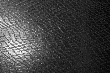 Наклейка на ноутбук Черная Кожа Рептилии