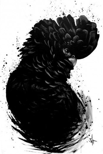 Наклейка на планшет Black Parrot