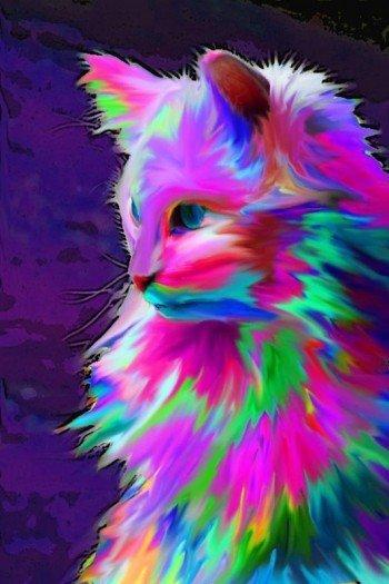 Наклейка на планшет Кислый Кот