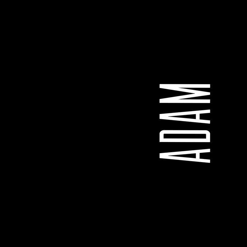 Наклейка на телефон Адам - черный фон