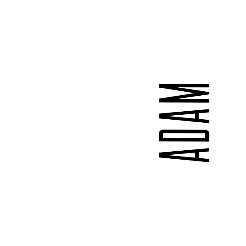 Наклейка на телефон Адам - белый фон