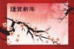 Наклейка на ноутбук Сакура