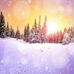Наклейка на плеер Зимняя Красота