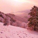 Наклейка на плеер Красивая Зима