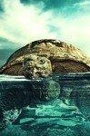 Наклейка на планшет Черепаха