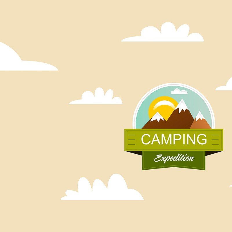 Чехол на телефон Camping Expedition