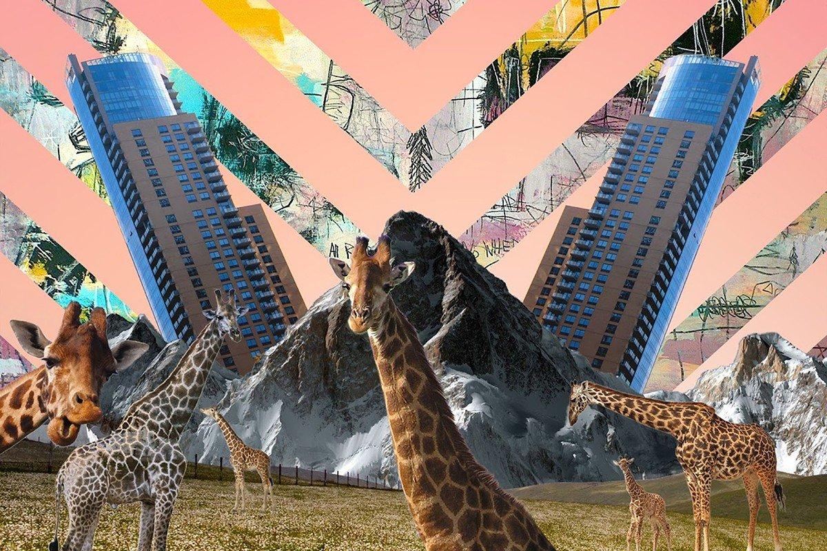 Наклейка на ноутбук Жирафы
