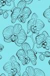 Наклейка на планшет Орхидея на бирюзовом фоне .