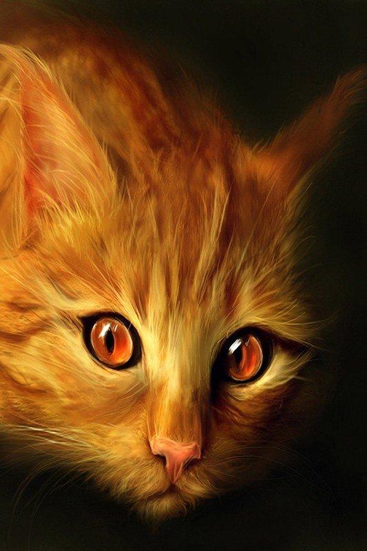 Наклейка на планшет Рыжий Кот